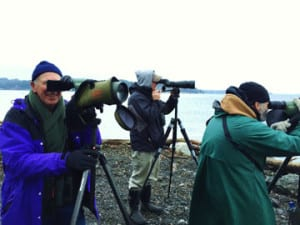 Birders Gerdts, Waggoner and Acker at Restoration Point.