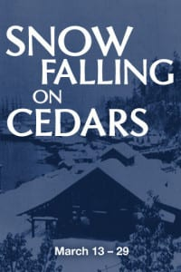 web-preview-snow-falling-on-cedars_large