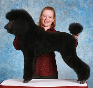 Julie Rust, certified master groomer of the local Fluffy Ruff Dog Spa.