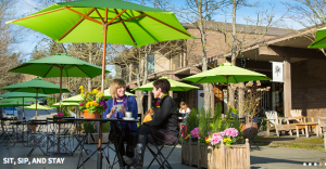 People and conversation are the focus of this image of Madrone Lane, Winslow, from the Downtown Association website
