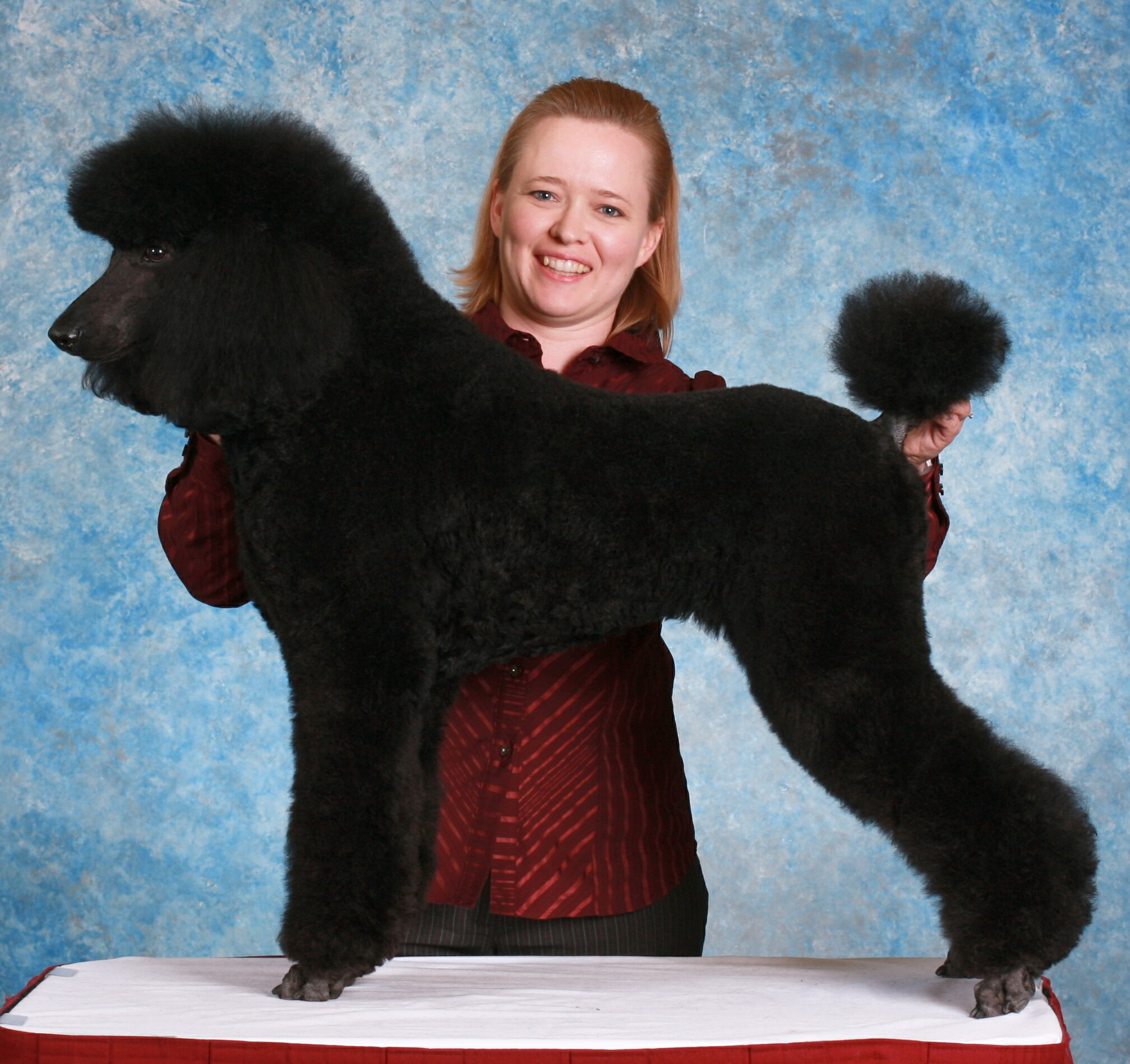 <i>Podcast: Who's On Bainbridge:</i> <br>Meet Julie Rust – a master dog groomer