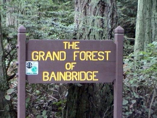 <i>Podcast: Community Cafe Bainbridge: Election 2015:</i> <br>Parks Board candidates Ken DeWitt and John Grinter