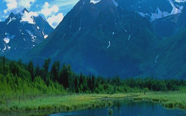 <b>Nelda Swiggett's Alaska Suite at Grace Church October 13</b>