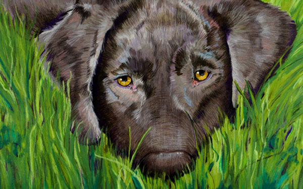Susan Wiersema's pet portraits at the Library